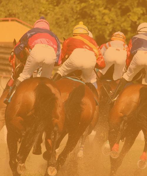 Jockeys Horse Riders