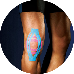 kinesiology at Fit for Adventure