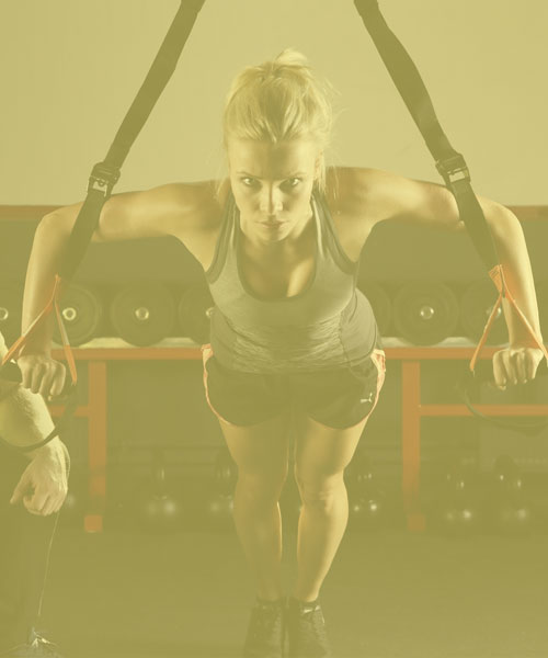 Weight Trainers Cross Fitters Gym Bunnies